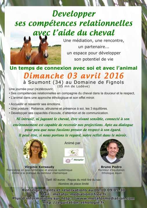 Mediation equine 03avril2016